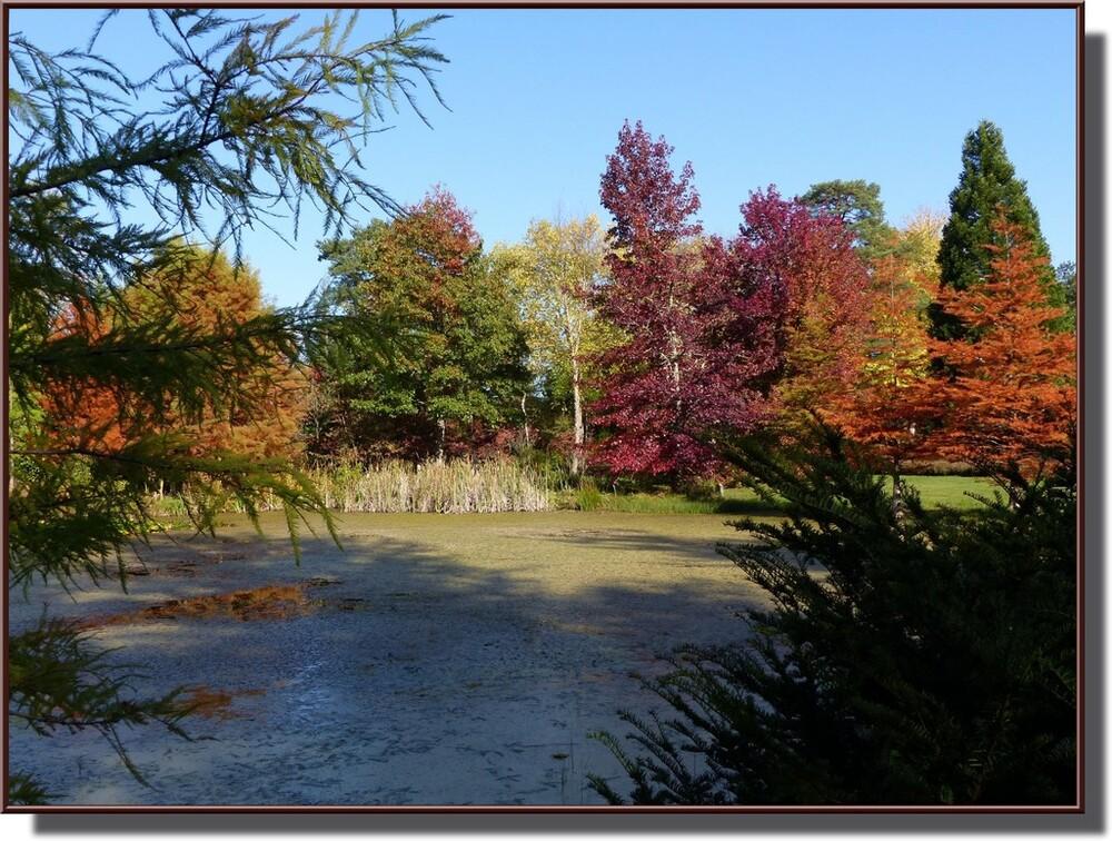 """un endroit """"fabuleux"""" : le chêne et le roseau"""