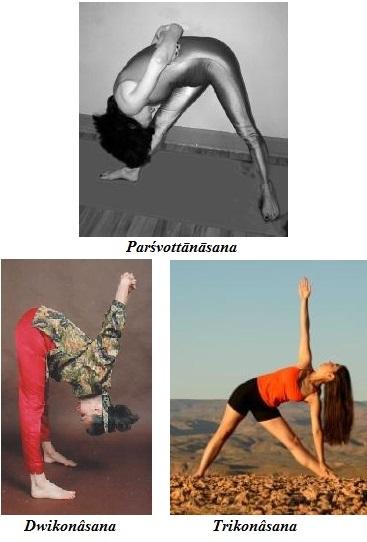 fp-Flexions debout