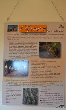 Le moulin du Cotentin à Fierville les mines