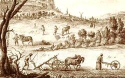 Hiérarchie sociale dans le monde paysan sous l'Ancien Régime