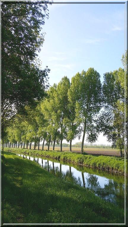 909 - Suite12 : -Notre Chemin vers St Jacques de Compostelle à travers ses anecdotes-