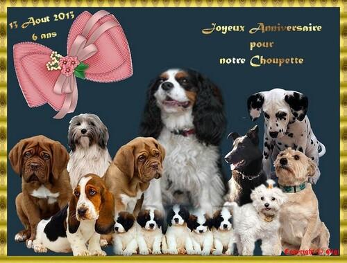 Choupette a 6 ans