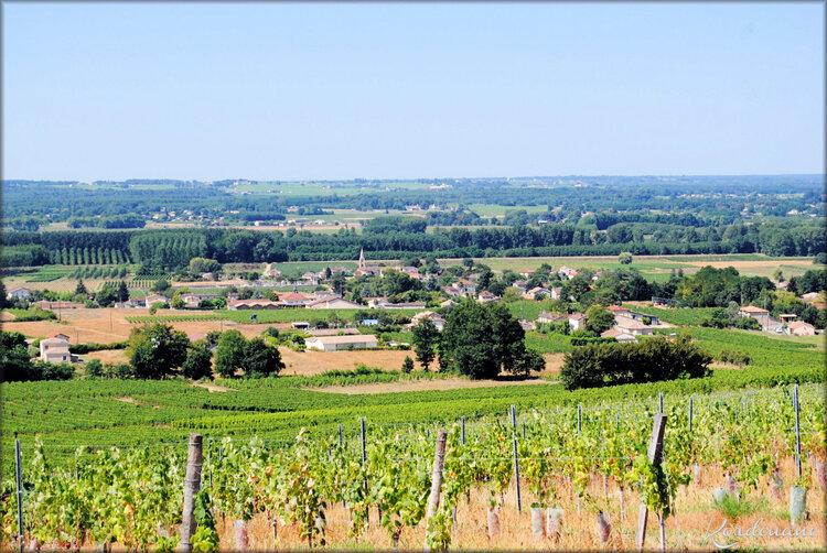 Photos paysage autour de Verdelais (Gironde)