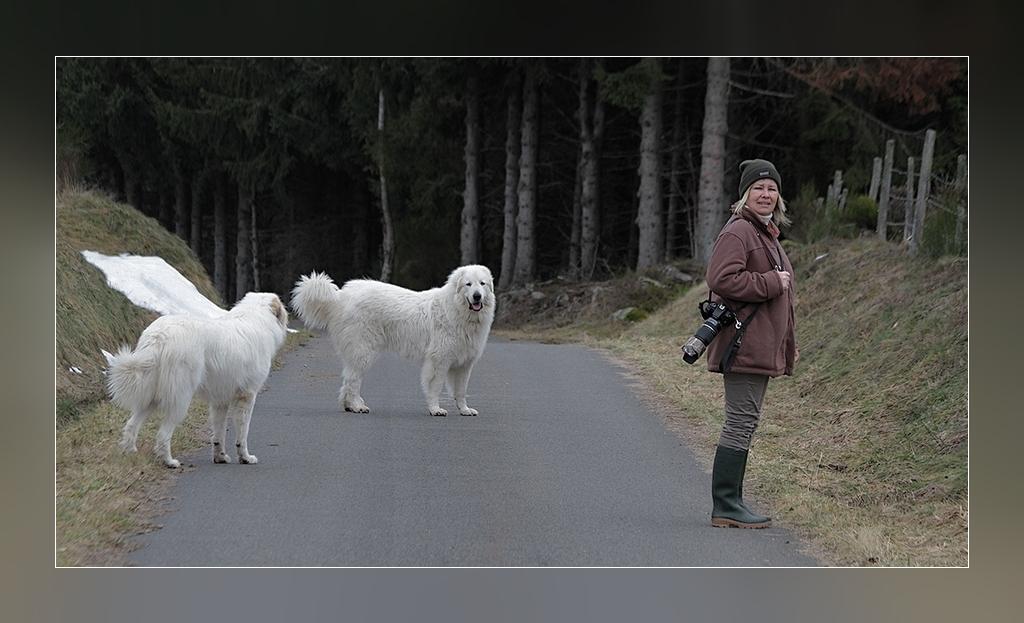 """Les grands blancs et leurs """"mamans"""""""