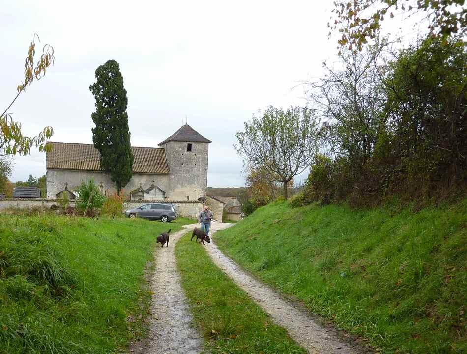 Promenade hivernale tout près de Villebois.