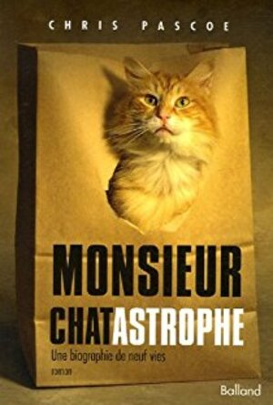 Monsieur Chatastrophe, Le journal de monsieur Chatastrophe
