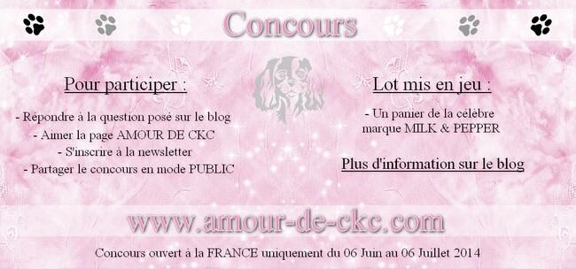 Concours : AMOUR DE CKC