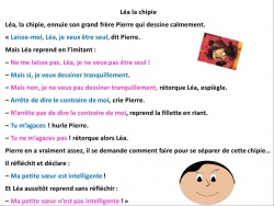 LES PHRASES NEGATIVES