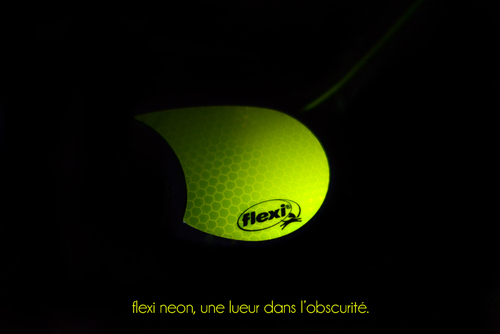 Balade nocturne lumineuse avec Flexi Neon