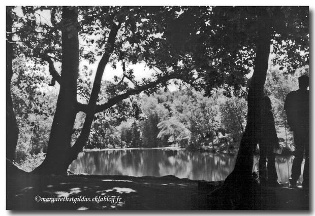 Sortie en forêt de Paimpont (2003)