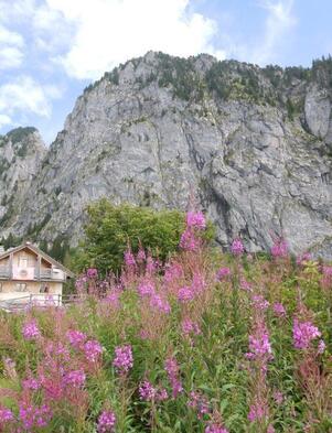 Les falaises du Mont Chauffé