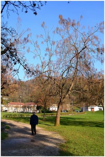 2013.12.02 parc d'Uriage les Bains (Région Rhône-Alpes, Isère)