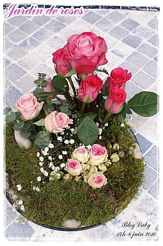 06 08 06 2010 jardin de roses (4)