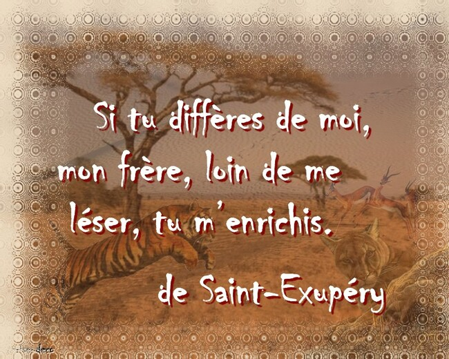 citation d'antoine de saint exupéry