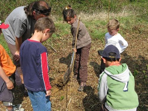 Nous sommes allés en forêt replanter nos chênes