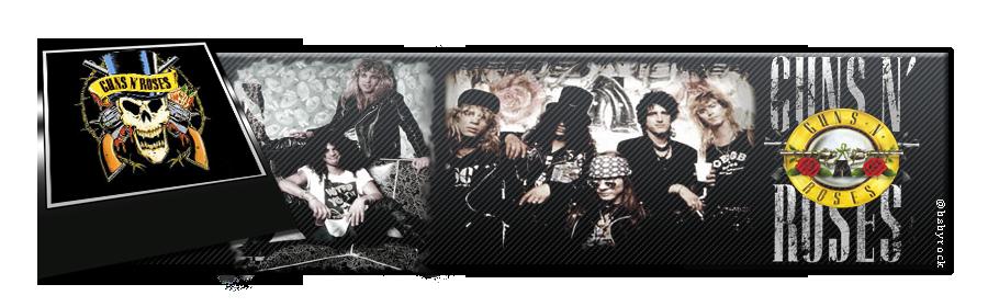Bannière Guns'N Roses