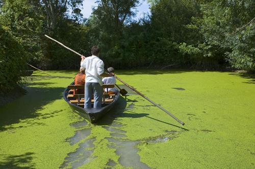La Venise Verte du Marais Poitevin