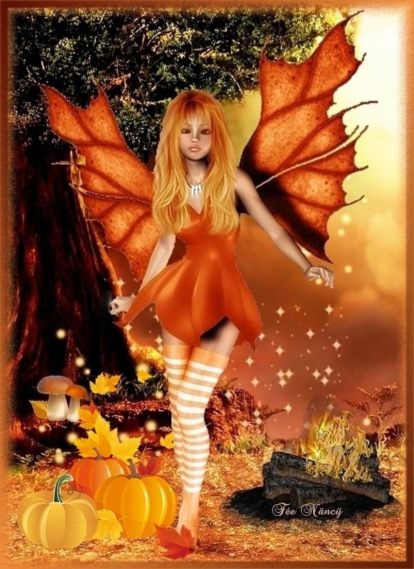 Merveilleux automne