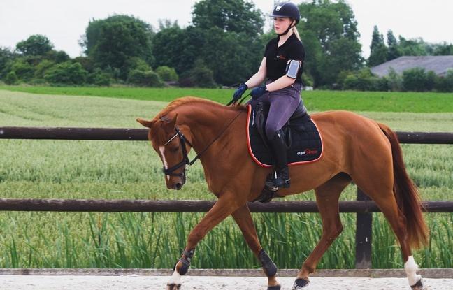 Le capteur développé par Equisense relève de nombreuses informations pour le cavalier.