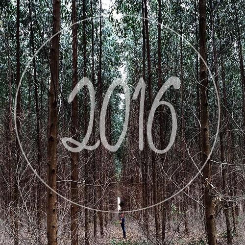 Mes projets pour 2016