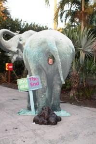 zoo 2653