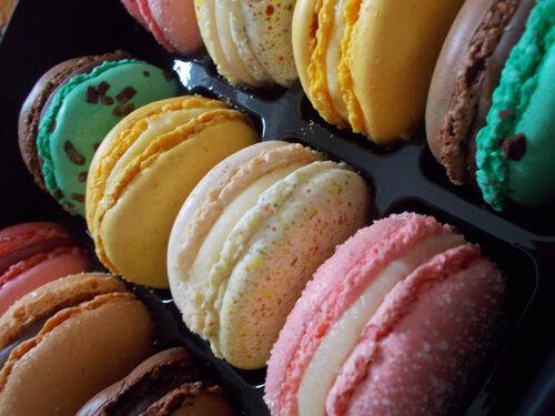 Macarons de Florent Sourice