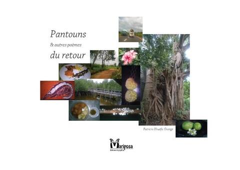 Pantouns & autres poèmes du retour de Patricia Houéfa Grange