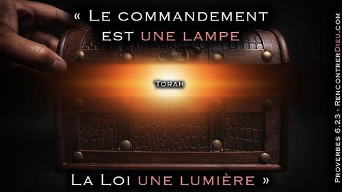 La Torah, Ce Trésor qui révèle l'orgueil du coeur - Paracha Choftim
