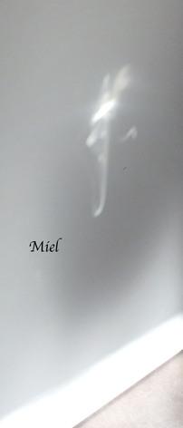 Miel - Les Emanants