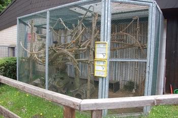 Zoo Saarbrücken 2012 142