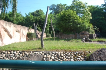 Zoo Saarbrücken 2012 011