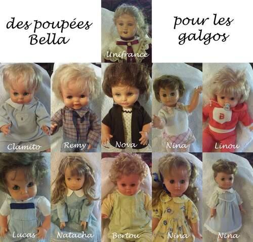 Les poupées Bella sauvent un lévrier chez SOS CHIENS GALGOS