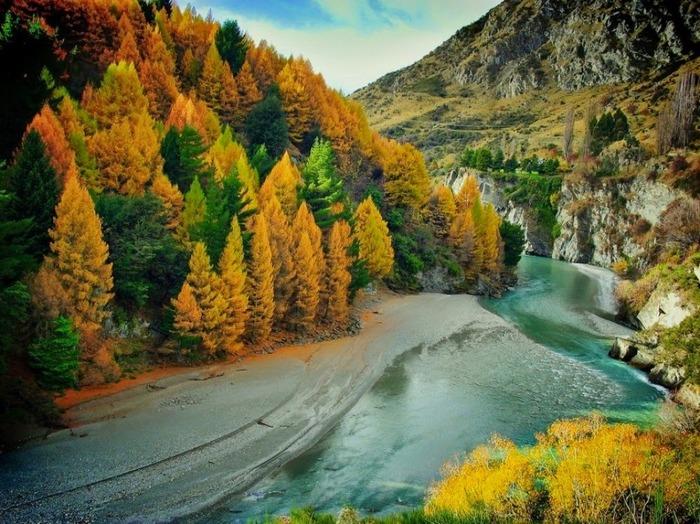 Équinoxe D'automne - Les Arbres Ont Une Vie Secrète -