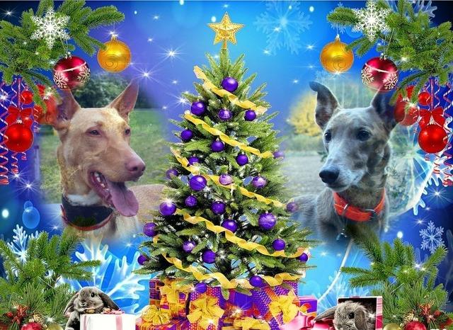 Les créas de Noël