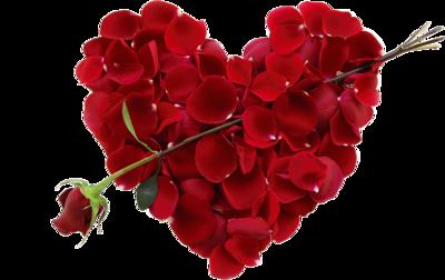Bonne Saint-Valentin à toutes et tous