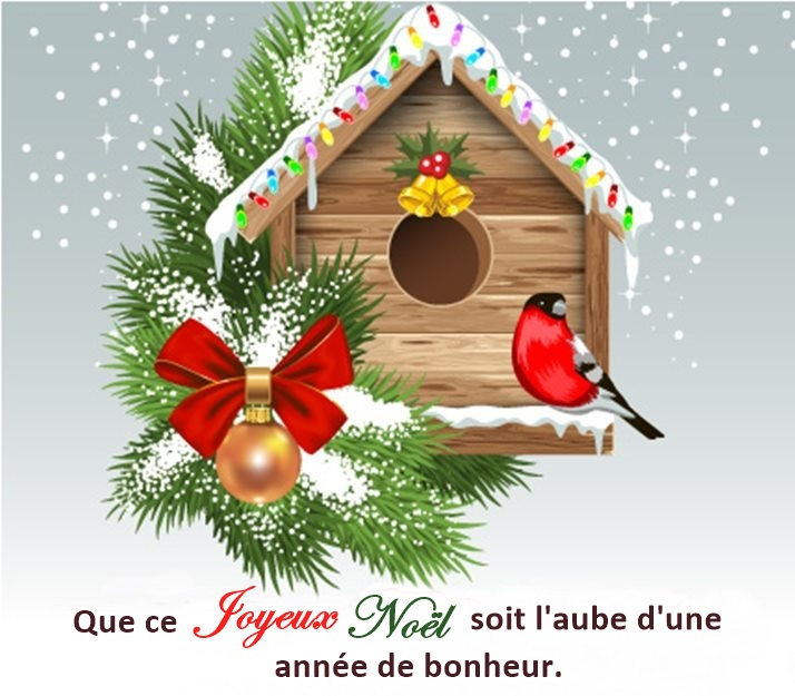 Joyeux Noel Souhaite.Je Vous Souhaite Un Joyeux Noel Amethyste