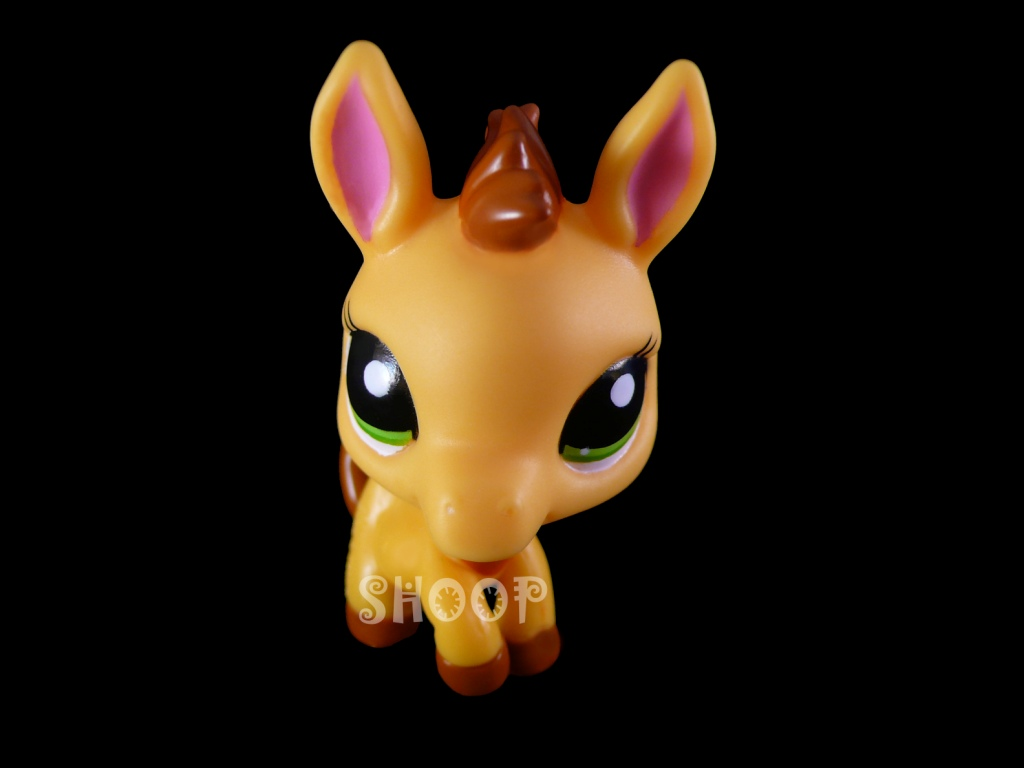LPS 2588