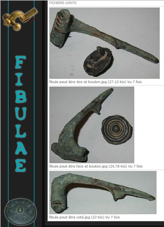 Fibulae 88.JPG photos