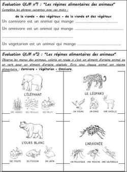 Les Mini évaluations QLM CE1