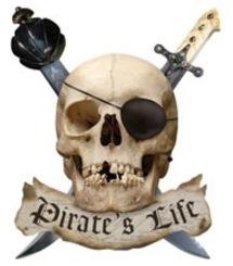Blog de chipiron : Un chipiron dans les Landes, Anniversaire pirate