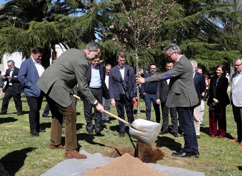 """""""Día internacional de los Bosques 2019"""""""
