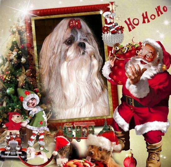 Our Christmas - 15bpg-1ez - normal