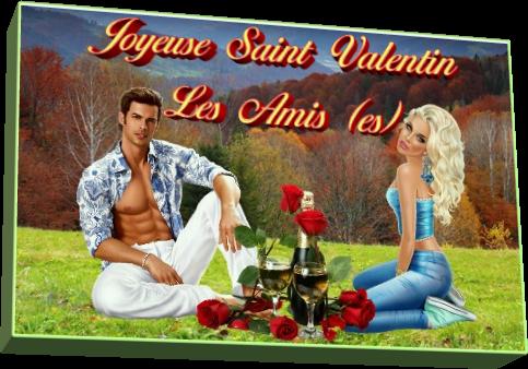 Joyeuse Saint Valentin les Amis (es)
