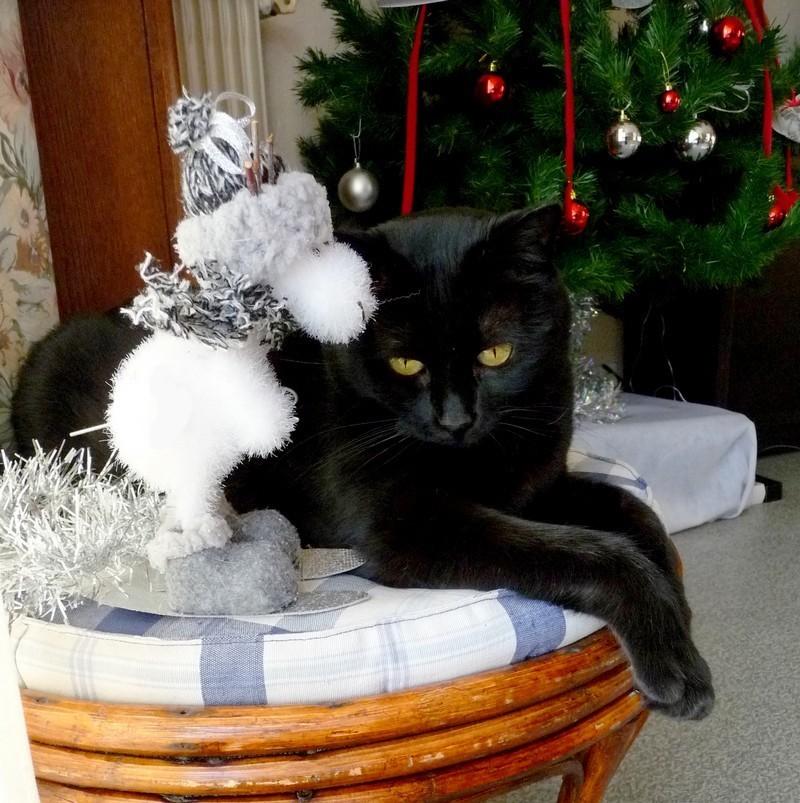 Bonne journée de Noël