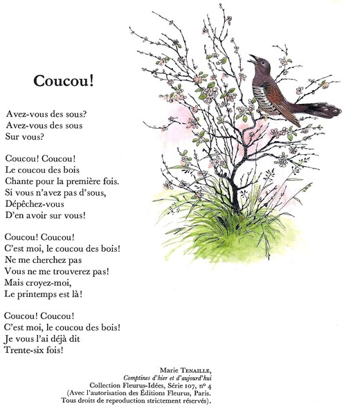COUCOU ! (Marie Tenaille)