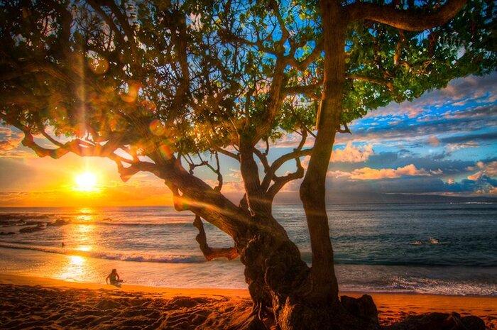 Une Petite Balade Dans L'île D'Hawaï...