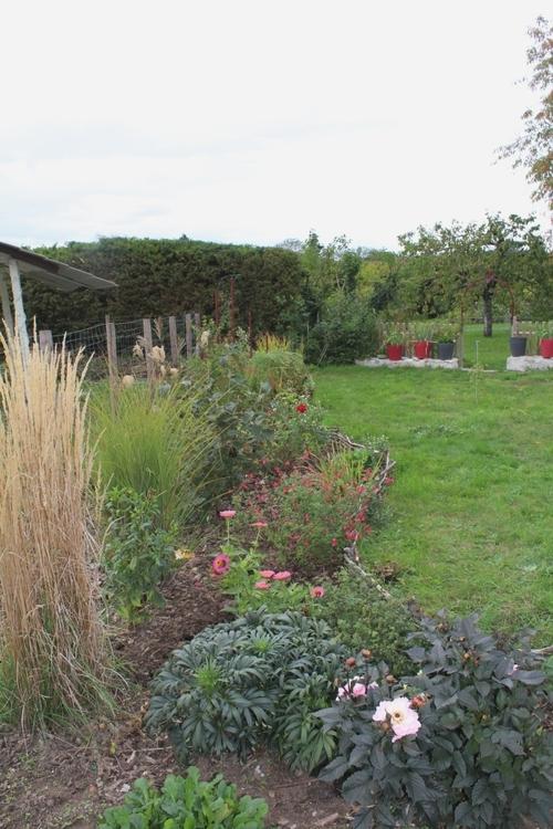 Petite fête des plantes à l'arboretum