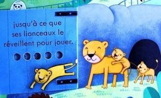 Coucou-Au-zoo-4.JPG