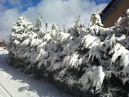 Neige à Montrodat