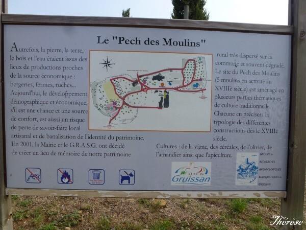 Le-Pech-des-Moulins--6-.JPG